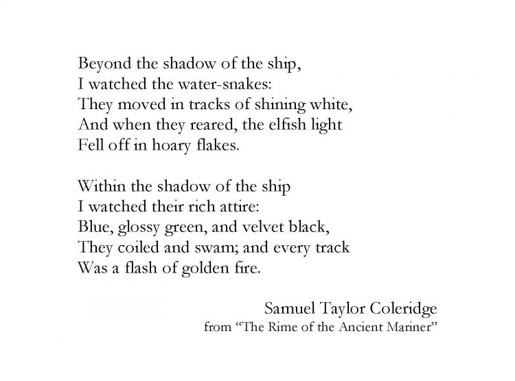 <a href=&quot;http://www.poetryfoundation.org/poem/173253&quot; target=&quot;_blank&quot;>&ldquo;The Rime of the Ancient Mariner&quot;&nbsp;</a>